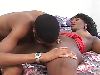 A horny young shemale sucks on her lovers thick cock
