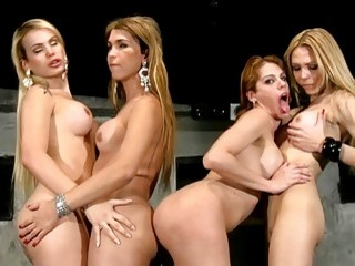 Incredible shemales get naked and fuck one another